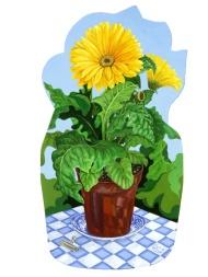 Gerber in a pot, Sold