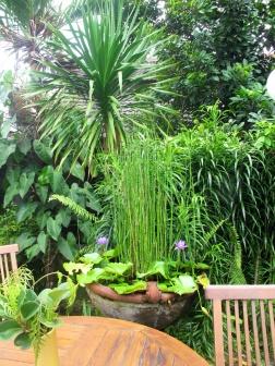 Rumah Mertua hotel garden