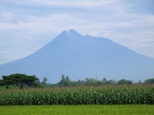 Merapi steaming after eruption this morning!