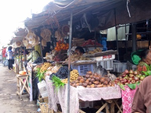 Snake fruit and many other unfamiliar exotic fruit.