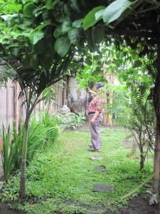 The lush garden next to his studio.