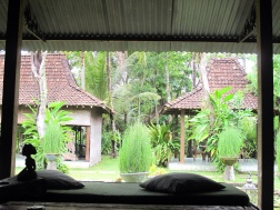 View from my room D'Omah Yogya Hotel.