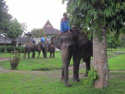 By Borobudur.