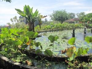 Tirtagangga Water Gardens, Bali.