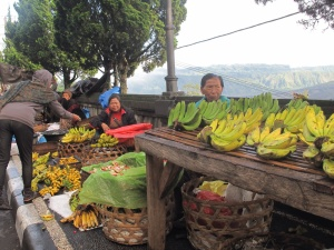 There were many banana sellers, selling all shapes and sizes.