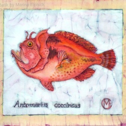 Scarlet Frogfish, batik on cotton by Marina Elphick
