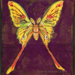 Luna moth, batik on cotton by Marina Elphick