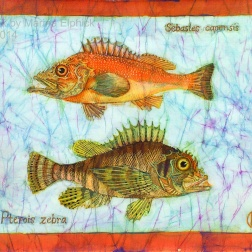 Scorpion and Turkey fish, batik on cotton by Marina Elphick
