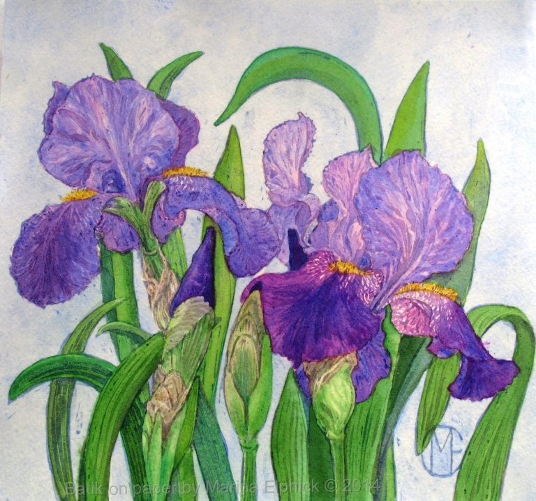 Iris floral study III, batik painting on paper by Marina Elphick. Batik art.