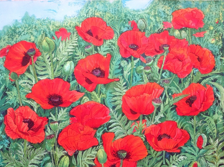 Poppy flower Garden, batik art on paper by Marina Elphick. Contemporary British batik artist.