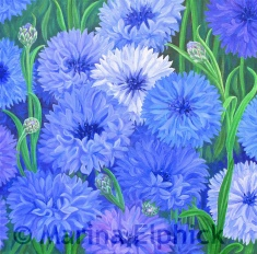 Cornflowers, oil on canvas by Marina Elphick, painter and batik artist working in the UK