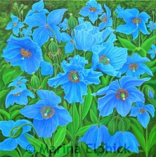 Himalayan Blue, oil on canvas by Marina Elphick, painter and batik artist working in the UK