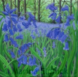 Bluebells, oil on canvas by Marina Elphick, painter and batik artist working in the UK