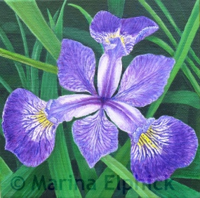 Blue Flag, oil on canvas by Marina Elphick, painter and batik artist working in the UK Flag,