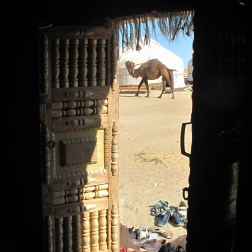 View from Yurt at lunchtime, camp Camels .